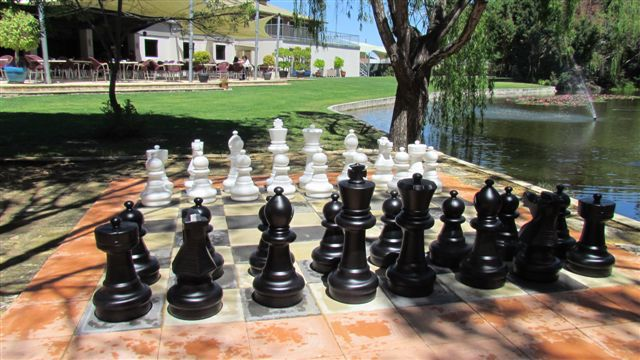 Seven Sensational Places to Play Chess in Perth | Crobs